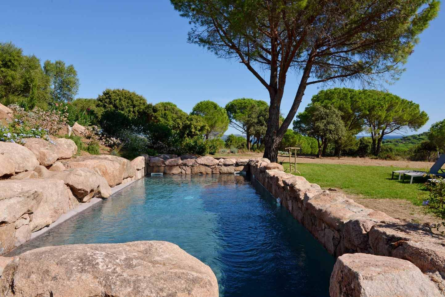 Domain with swimming pool